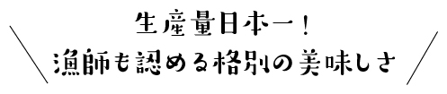 生産量日本一!漁師も認める格別の美味しさ