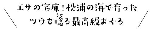 エサの宝庫!松浦の海で育ったツウも唸る最高級まぐろ