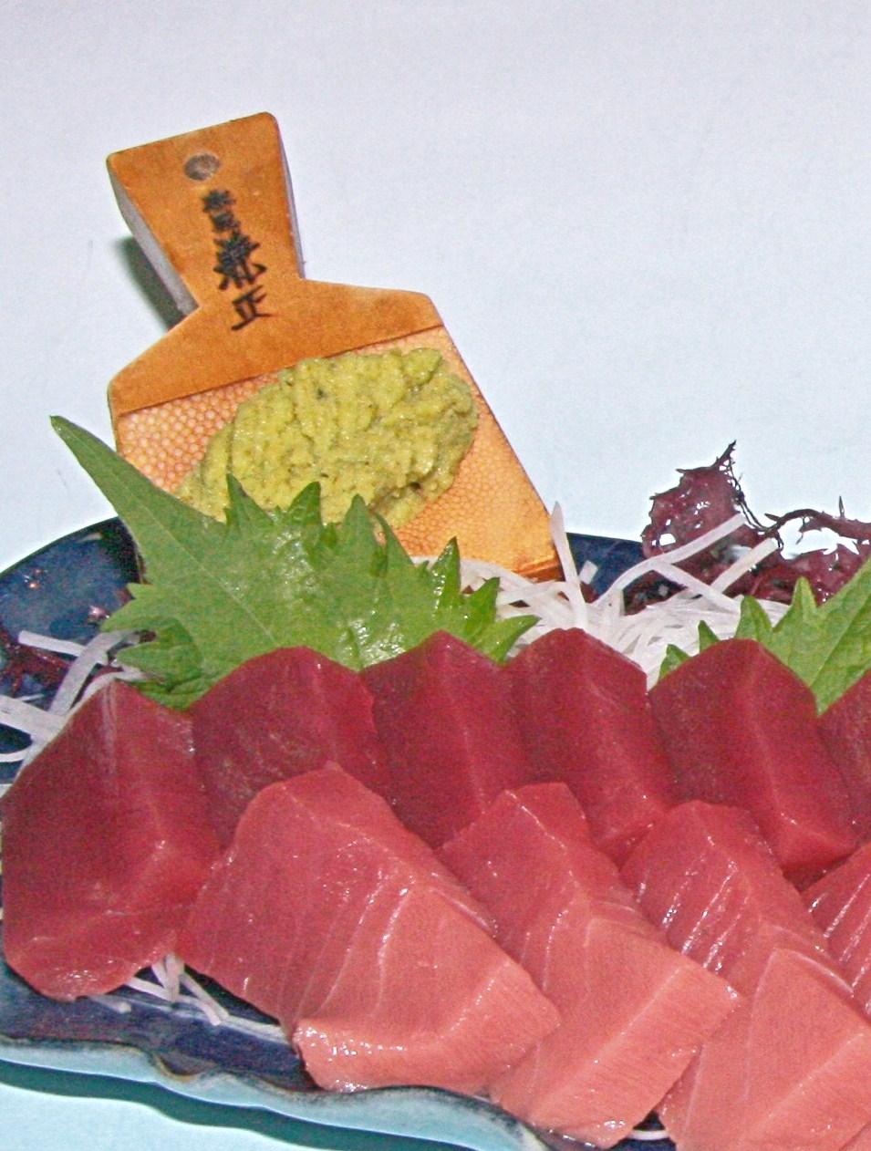 松浦蓝鳍金枪鱼