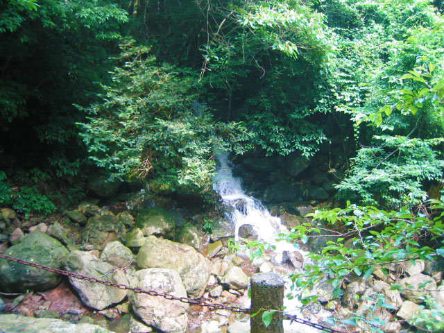 長崎県 柚木川内キャンプ場 の写真g31504