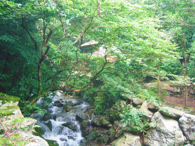 長崎県 柚木川内キャンプ場 の写真g8272